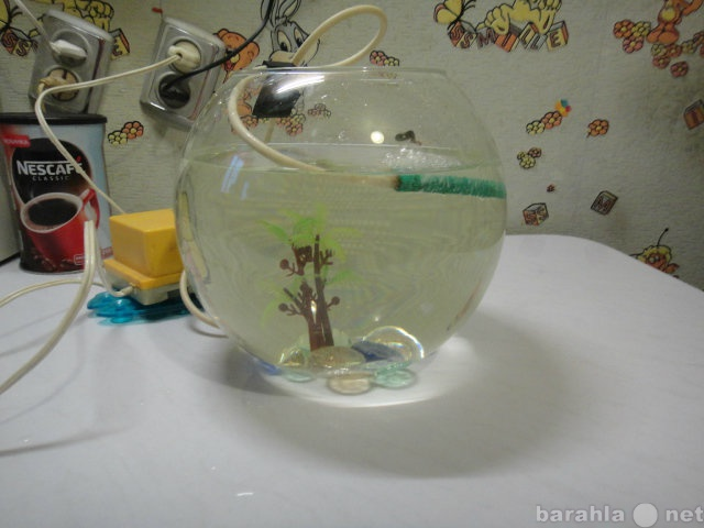 Продам аквариум круглый 5л.