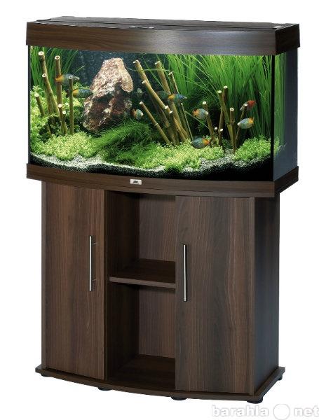 Продам Аквариум,грунт,светильник,песчаник,рыбы