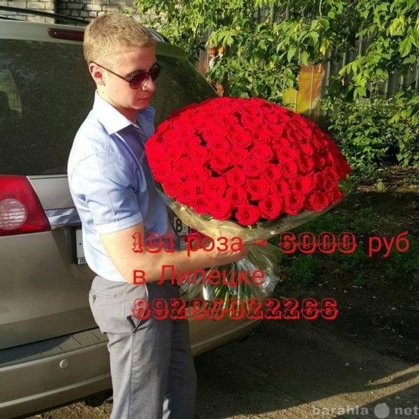 Продам Розы в Липецке оптом