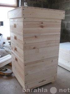 Приму в дар Пчелиные улья (б/у) и пчелы.