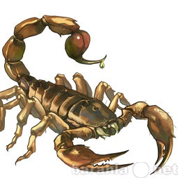 Продам обезболивающий Эликсир из яда Скорпиона