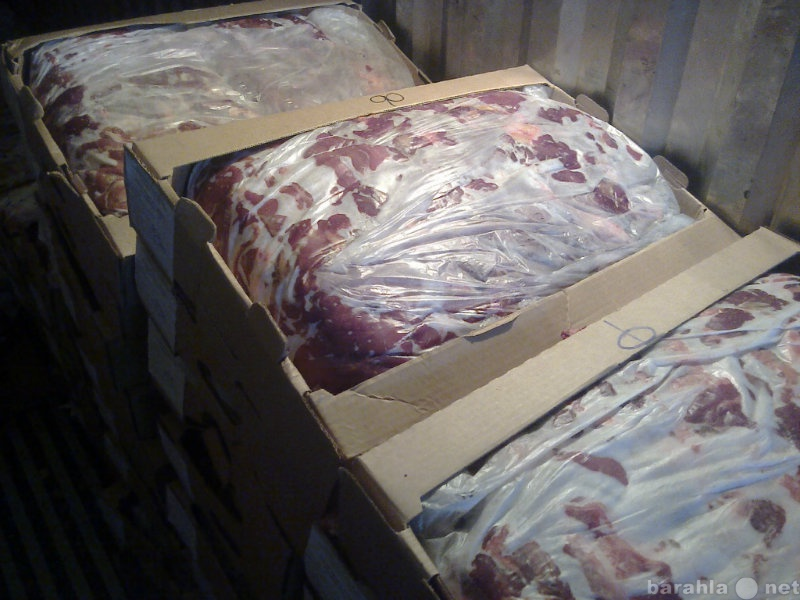 Продам мясо свинины оптом