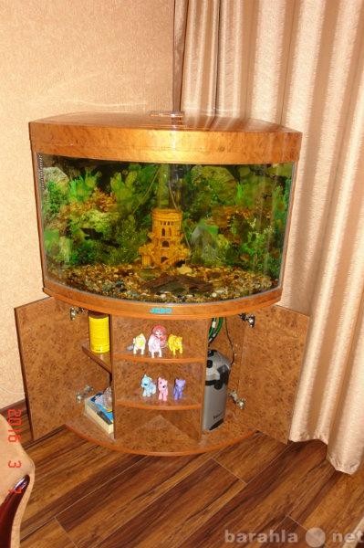 Продам Угловой аквариум JEBO-R470 с тумбой