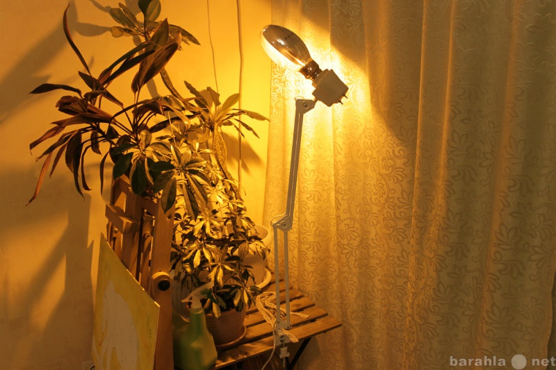 Продам Светильники для рассады ДНаЗ 150 Вт