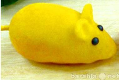 Продам мышку для кошки (игрушка, новая)