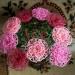 Продам Прекрасные розы