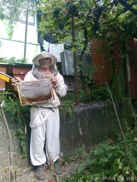 Продам мёд цветочный,домашний