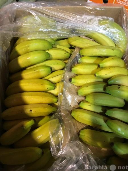 Продам Продаем бананы из Испании
