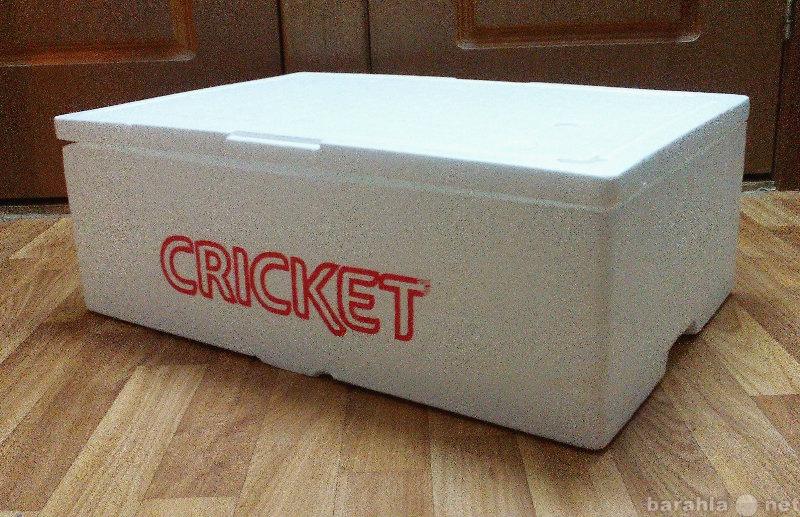 Продам Термо-ящик для хранения продуктов