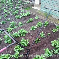Продам Окучник садовый