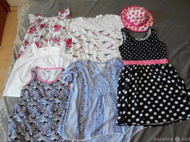 Продам: Летние кофточки 5 и 1 платье.