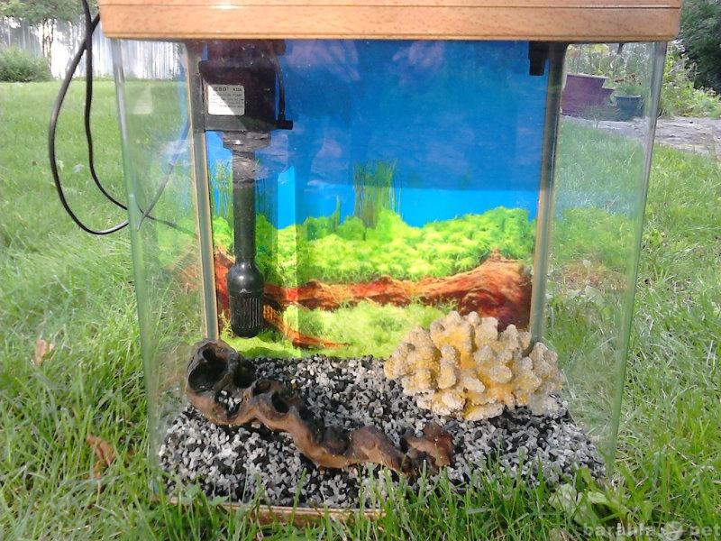 Продам аквариум 35л.JEBO