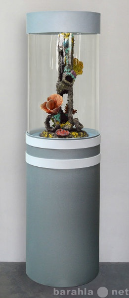 Продам Изумительный цилиндрический аквариум 90л