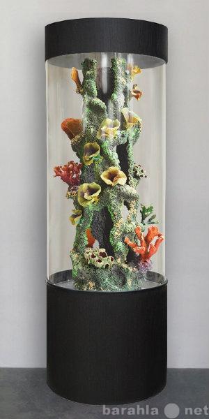 Продам Красивый аквариум цилиндрический на 282л