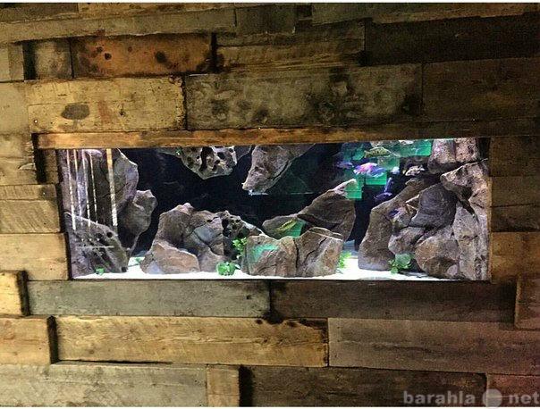 Продам Оформление аквариума- задние фоны