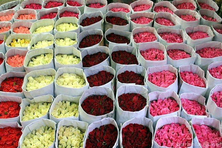 Букет, живые цветы мелкий опт москва