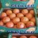 Продам Продаем грейпфрут из Испании
