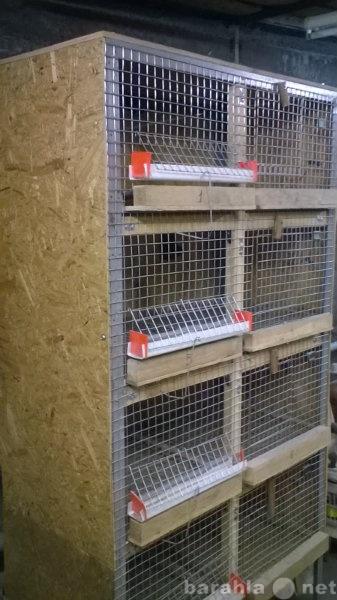 Продам Брудер для подращивания цыплят