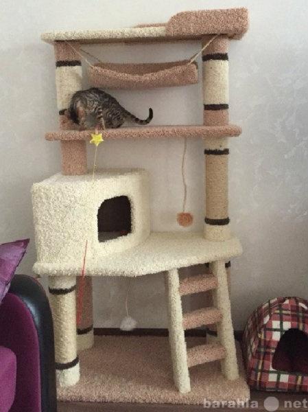 Продам Домики для  кошек