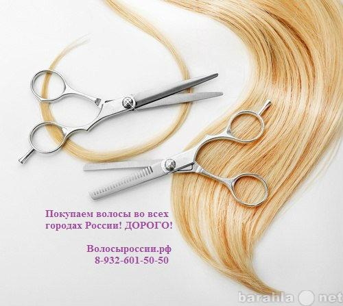 Куплю Купим волосы в Костроме! Дороже всех!