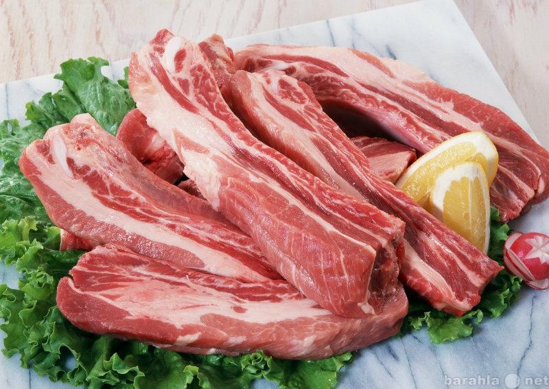 Куплю Мясо свинины