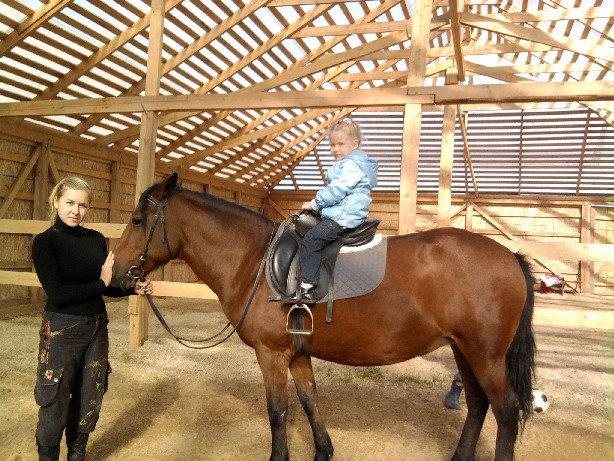 Предложение: Верховая езда, обучение, иппотерапия .