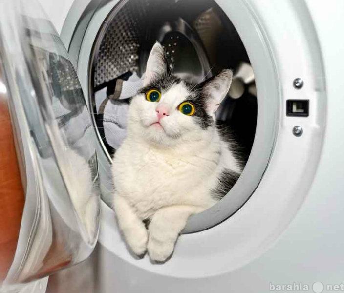 Предложение: Ремонт стиральной машины на дому.