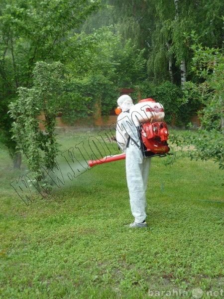 Предложение: Уничтожение клещей и комаров
