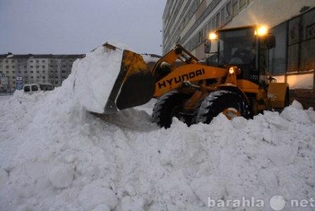 Предложение: Чистка и вывоз снега