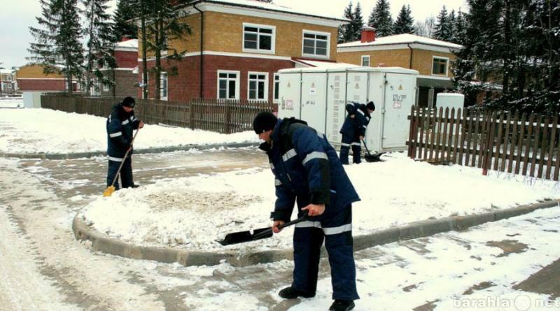 Предложение: Уборка снега, вывоз мусора