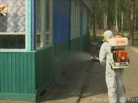 Предложение: выведение клопов тараканов комаров ос