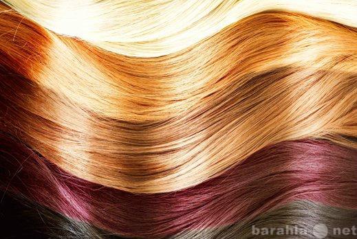 Предложение: Окрашивание и мелирование волос