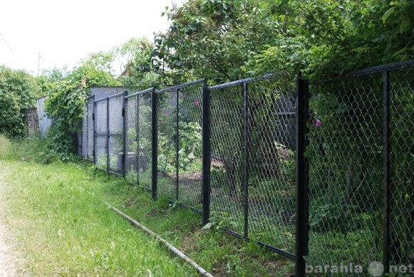 Предложение: Забор из сетки-рабицы и профнастила