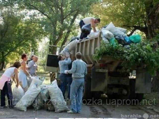 Предложение: Вынос,спуск,вывоз и уборка мусора и снег