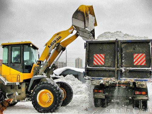 Предложение: вывоз уборка снега
