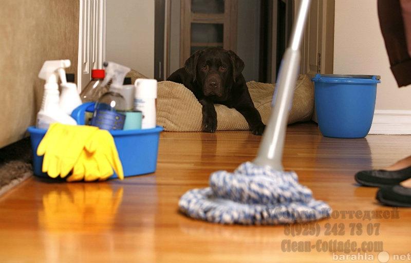 Предложение: уборка квартир,офисов,мытье окон