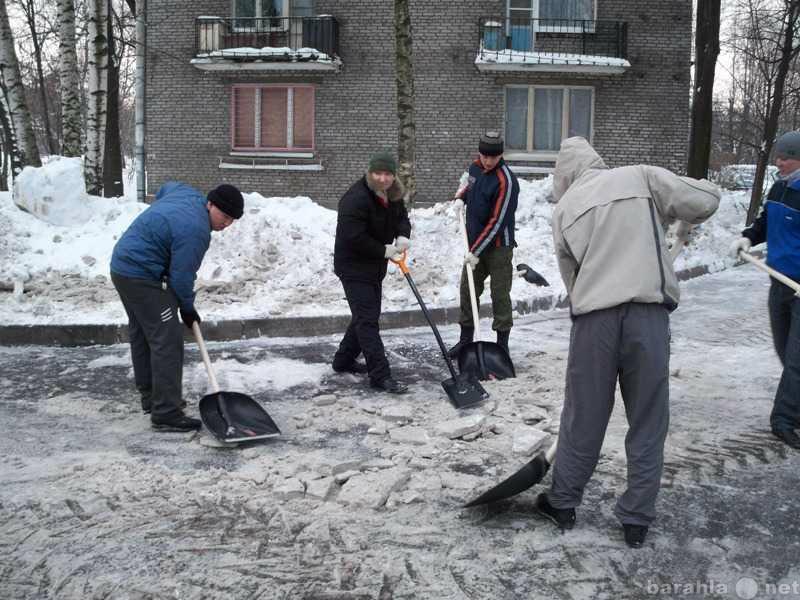 Предложение: уборка мусора,снега на любой площади