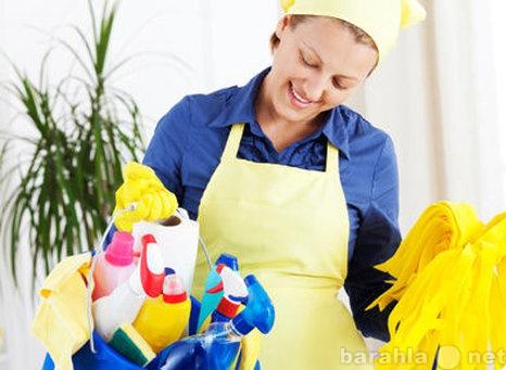 Предложение: Уборка квартиры
