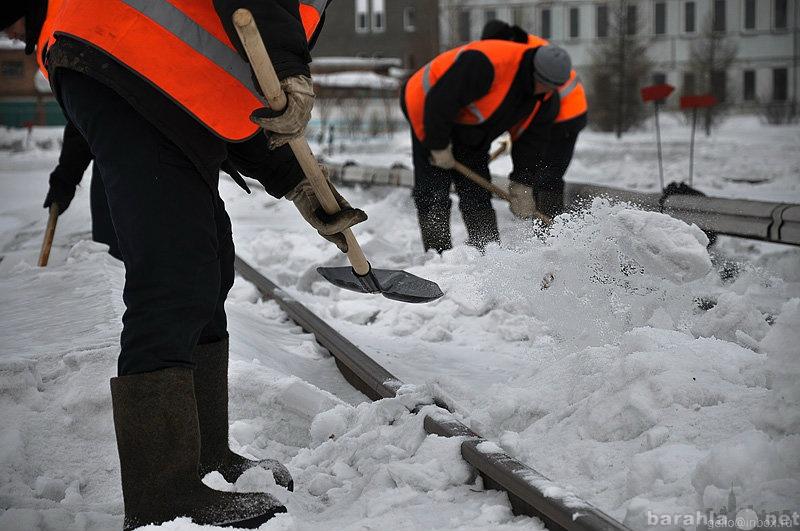 Предложение: Уборка территорий и крыш от снега
