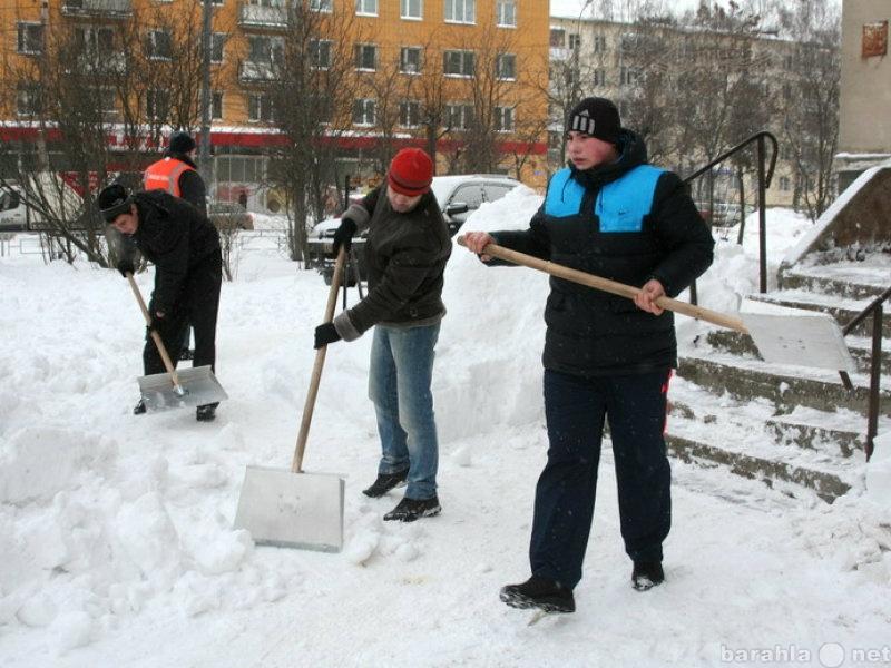 Предложение: 8-929-849-5006 Уборка снега. Вывоз.