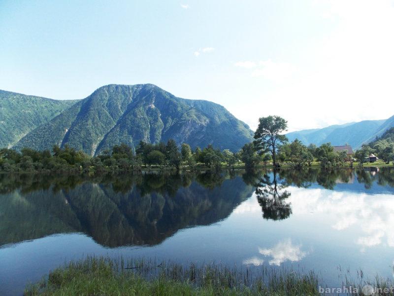 Предложение: Арт-тур на Алтай 1-6 августа для жителей