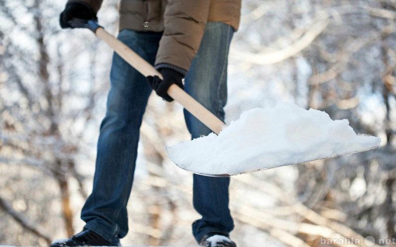 Предложение: Уборка снега. Благоустройство