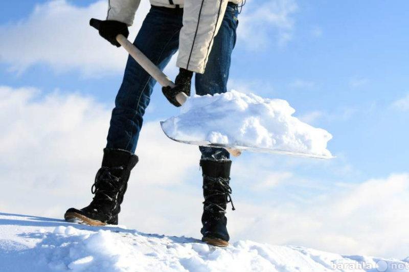 Предложение: Чистка снега Уборка территории Разнорабо