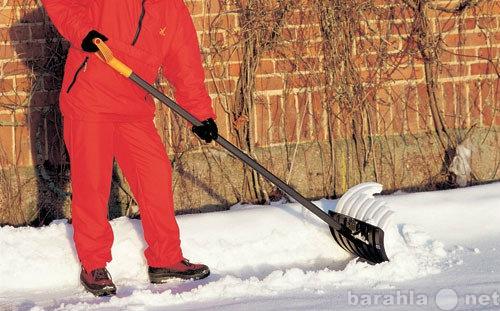 Предложение: Уборка территорий, вывоз мусора, снега