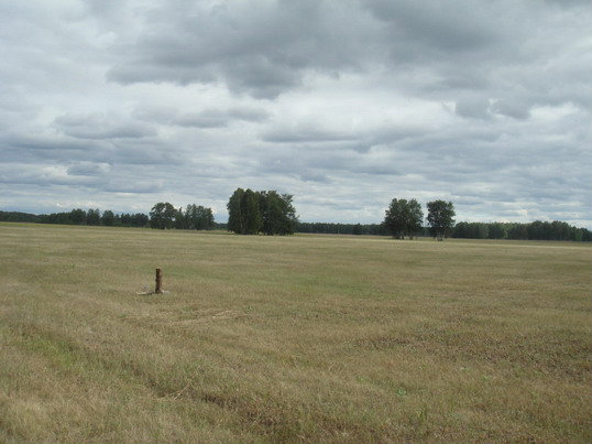 Продам: земельный участок п.Красноярка