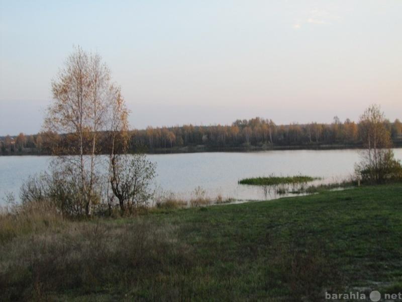 Сдам: Земли сельскохозяйственного назначения