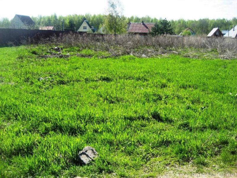 Продам: продажа участка 26 сот. п.Татищево, СНТ