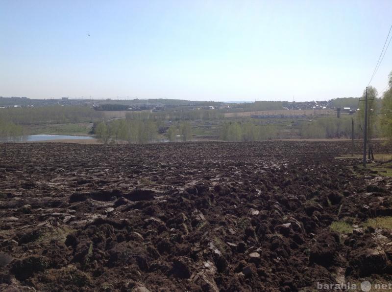 Продам: 9 га.подготовленной земли для посадки